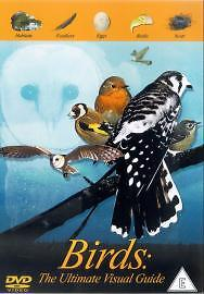 Birds-The-Ultimate-Visual-Guide-DVD-2004