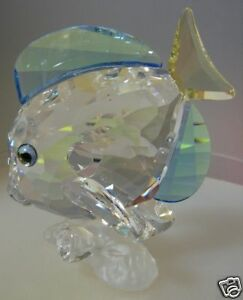 SWAROVSKI-SILVER-CRYSTAL-BLUE-TANG-FISH-COLOURED-S-C-S-MINT-IN-BOX-886180