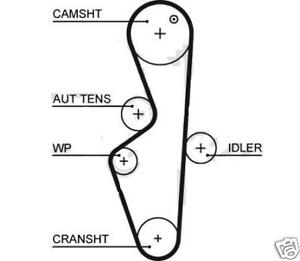 peugeot timing belt with 330377921410 on Fiat Punto Airbag Wiring Diagram additionally Fiat Online Parts Catalog in addition All Audi General Diy additionally 330377921410 besides T10172906 Find timing marks.
