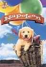 Napoleon (DVD, 2009, DVD Cash)