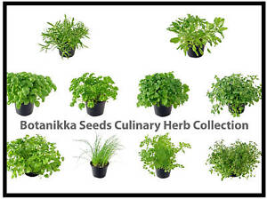 Culinary-Herb-Seed-Collection-Build-your-own-BOTANIKKA