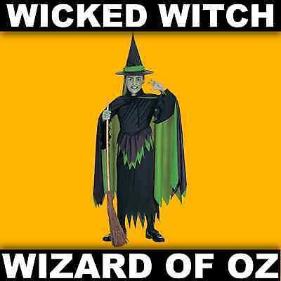 Wizard Of Oz Wicked Witch Fancy Dress Costume S, M, L