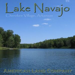 Lake-Area-Land-Lot-For-House-Home-Cabin-Investment-Absolute-NR-Auction-c20-3ht