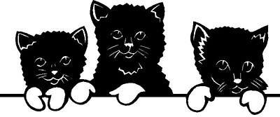 Cute Kitty Cat/Kitten Sticker/Decal for Vehicle/Window+