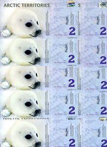 LOT-Arctic-Territories-10-x-2-2010-Polymer-UNC