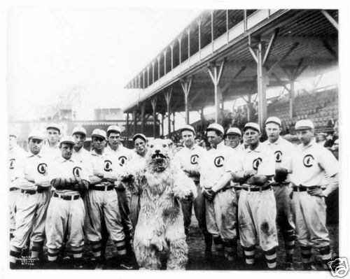 Chicago Cubs 1908 World Series Champs 8x10 Team Photo 2