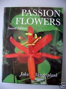 Passion Flowers 1996 Passionsblume - Eggenstein-Leopoldshafen, Deutschland - Passion Flowers 1996 Passionsblume - Eggenstein-Leopoldshafen, Deutschland