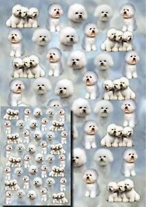 Bichon-Frise-Dog-Gift-Wrapping-Paper-By-Starprint
