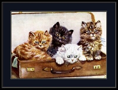 English Picture Kitten Cat Kittens Cats Suitcase Vintage Art Poster Print