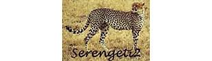 serengeti2 Antiques