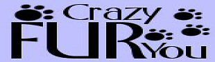 crazyfuryou81