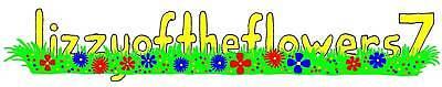 lizzyoftheflowers7