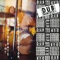 Degenerate Introduction von Dub Narcotic Sound System (2004)