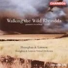 Heneghan & Lawson (Walking The Wild Rhondda) [Hybrid SACD] (2003)