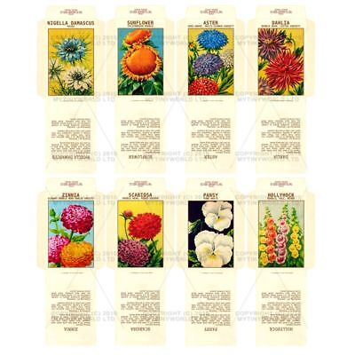 8 Dolls House Flower Seed Packets (set 3)