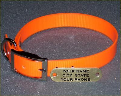 "WARNER DAYGLO DOG COLLAR  ORANGE  19"" BRASS ID TAG on Rummage"