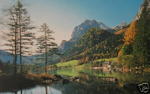 NEW 5 FT Mountain View POSTER - WALL MURAL - WALL DECOR