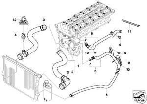 bmw e46 x3 x5 e39 e60 water radiator hose seal all e38 all