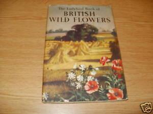 Ladybird-Book-of-British-Wild-Flowers-1st-Ed-EB236
