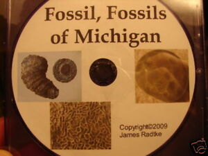 Fossil-Fossils-Of-Michigan-Rockhound-Photo-Field-Guide