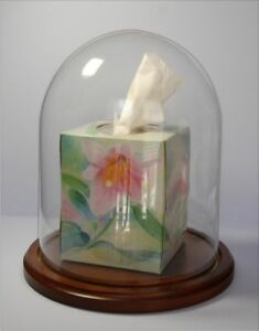 Glass-Dome-with-base-8x10-doll-case-globe-clock-dome-taxidermy