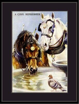 English Picture Print Shire Cart Horse Pigeon Bird Art
