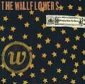 Bringing Down The Horse - The Wallflowers