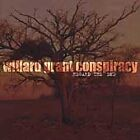 Regard the End : Willard Grant Conspiracy (CD, 2005)