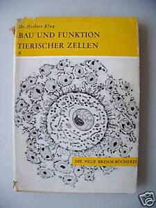 Bau-und-Funktion-tierischer-Zellen-1965