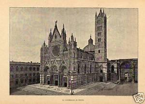 1881 SIENA Italia Stampa Antica Old Engraving - Pescara, Italia - L'oggetto può essere restituito - Pescara, Italia