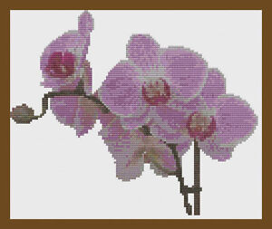 Pink Orchid Spray Flower Cross Stitch Kit by Florashell
