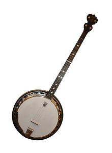Deering Sierra Guitar Banjo