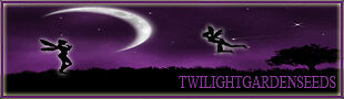Twilight Garden Seeds