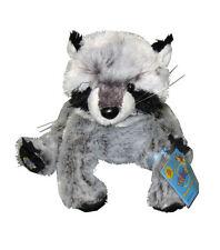 Raccoon Retired Sealed GANZ Webkinz & Lil 'Kinz Animals