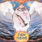 Steve Hillage - Fish Rising (2007)