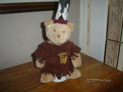Treasures Inc. Story Book Bear Native Indian with Stand