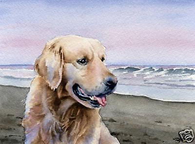 GOLDEN RETRIEVER Painting Dog 8 x 10 ART Print Signed by Artist DJR