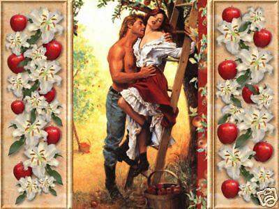 Donna's Romance Novels