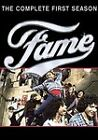 Fame - The Complete First Season (DVD, 4-Disc Set)
