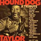 Various Artists - Hound Dog Taylor (A Tribute, 1998)