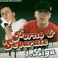 Erste Liga von Prinz Porno & Separate (2004)