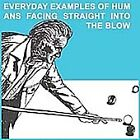 The Blow - Everyday Examples of Humans Facing Straight into the Blow (2005)