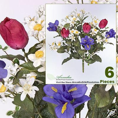 6 Tulip Iris 16