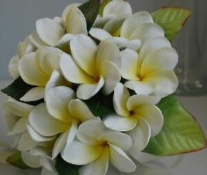 FULL-LATEX-BRIDE-FRANGIPANI-WEDDING-BOUQUET-FLOWERS-SET
