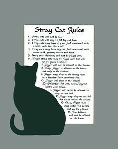 Stray Cat Rules Calligraphy Saying Humor Poem Pet Sign