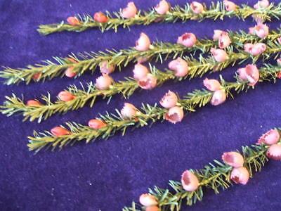 Vintage Millinery Flower Hat Heather Y71 Plum Brown