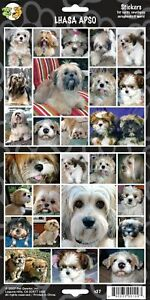 Lhasa-Apso-Dog-Stickers-for-Scrapbooking-Note-Cards-Photos
