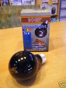 Hobby-37376-Moonlight-75W