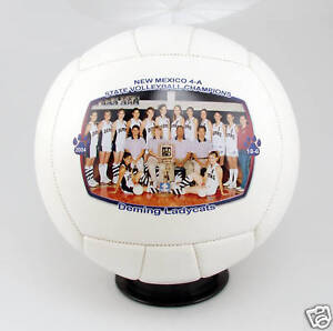 Personalized Custom Volleyball Coach Trophy Award Gift | eBay