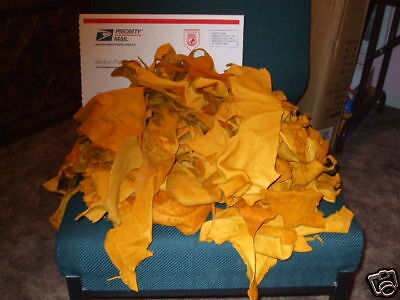 3 lb. SAMPLE Pack SOFT ELK Leather Scraps